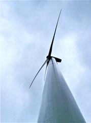 Wind Farm Westerlo II