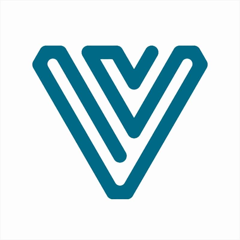 Logo Team V Architecture