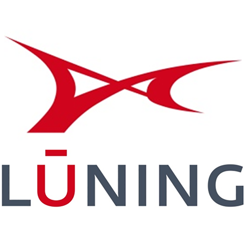 Logo Lüning